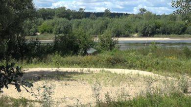 Photo of Zakaz kąpieli na obszarach wodnych w gminie Puławy