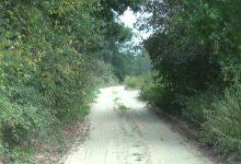 Photo of Krajoznawczy Rajd Rowerowy z okazji Dnia Drzewa