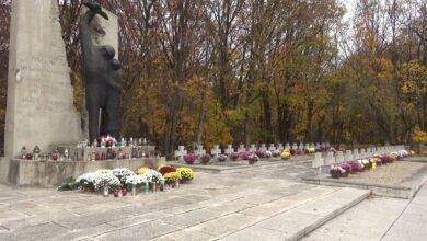 Photo of Chryzantemy ozdobiły puławskie pomniki