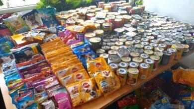 Photo of Puławianie zebrali karmę dla zwierzaków [VIDEO]