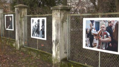 """Photo of """"Galeria na płocie"""" z nową wystawą [VIDEO]"""