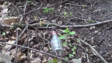 Photo of Sprzątanie lasu – już w tę sobotę [VIDEO]