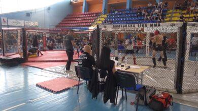 Photo of AL MMA 195 w Puławach