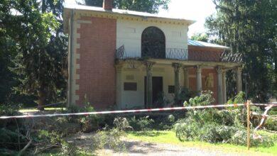 Photo of Domek Gotycki zniszczony przez drzewo