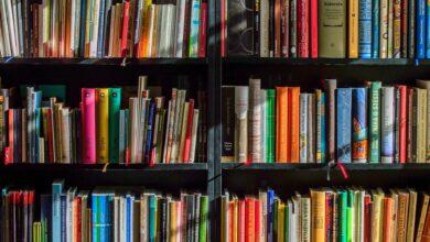 Photo of Kiermasz książek w Puławach